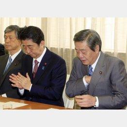 おごりと特権意識(安倍首相と竹下総務会長)/(C)日刊ゲンダイ