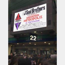 三代目JSBのライブに潜入(C)日刊ゲンダイ