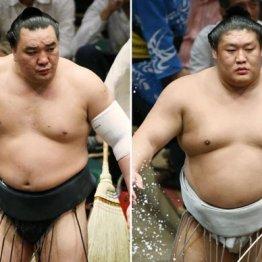 貴ノ岩(右)は先輩の日馬富士に懐いていた