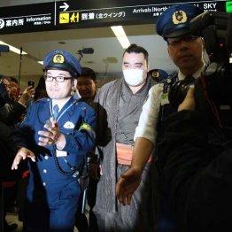 事情聴取のため福岡から帰京した日馬富士