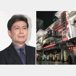来年には「二代目白鸚」を襲名する松本幸四郎/(C)日刊ゲンダイ