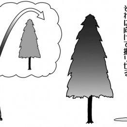 高い木越えは先に高弾道ボールをイメージする