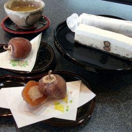 """和菓子・喫茶 沙羅樹(岡本)コーヒーとも相性がいい""""こだわり和菓子"""""""