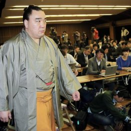 引退会見に臨む日馬富士