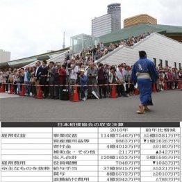 相撲協会の収支決算