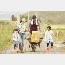 田舎暮らしは健康的(C)PIXTA