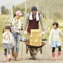 田舎暮らしは健康的