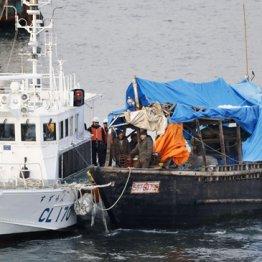 海上保安部の巡視船にえい航される木造船