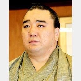 鳥取県警に書類送検された日馬富士(C)日刊ゲンダイ