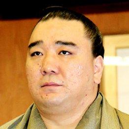 鳥取県警に書類送検された日馬富士