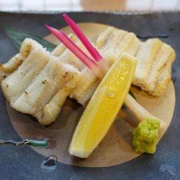 脂の乗った魚がズラリ 冬の対馬と壱岐は「美食天国」