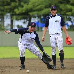 侍U18では一塁とDHを(C)日刊ゲンダイ
