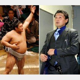 貴ノ岩(左)の本心は…(C)日刊ゲンダイ