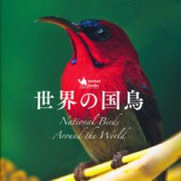 日本の国鳥に「キジ」が選ばれた理由