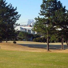 若洲ゴルフリンクスはジュニア対象に手ぶら無料レッスン
