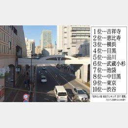 実は穴場(後楽園)/(C)日刊ゲンダイ