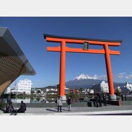 鳥居の奥に富士山(C)日刊ゲンダイ