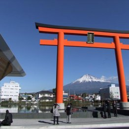 """静岡県富士山世界遺産センターで3776mを""""擬似登山""""体験"""