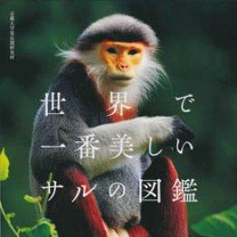 「世界で一番美しいサルの図鑑」京都大学霊長類研究所編