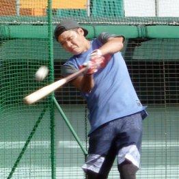 打撃練習を行う坂本