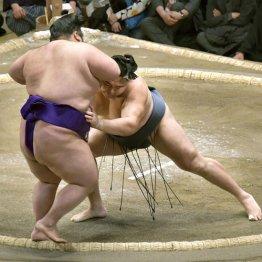 貴景勝(左)を蹴散らした鶴竜