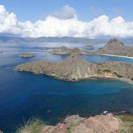 幸福度200% インドネシア「コモド国立公園」で島巡り