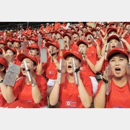 サッカーW杯アジア2次予選で声援を送る北朝鮮の女性応援団(C)共同通信社