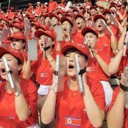 サッカーW杯アジア2次予選で声援を送る北朝鮮の女性応援団
