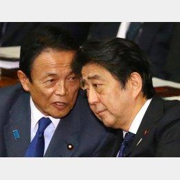 安倍首相と話し込む麻生副総理(C)日刊ゲンダイ