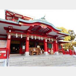 富岡八幡宮(C)日刊ゲンダイ
