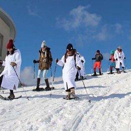 関西最大のキッズパーク「峰山高原リゾートホワイトピーク」