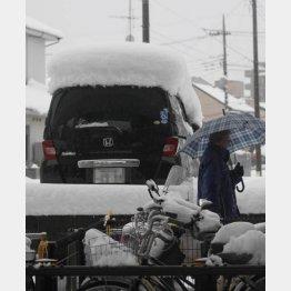 大雪が降れば何か作りたくなる…(写真はイメージ)(C)日刊ゲンダイ