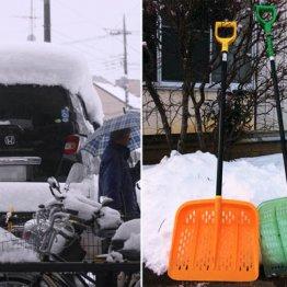 チェーンは3倍売れた 大雪でウハウハの企業と泣いた企業