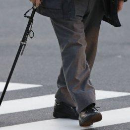 歩幅を意識 講演で「脳の若返り術」語る僕の認知症予防法