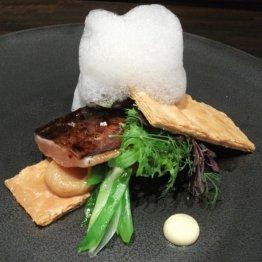 アコルドゥ(奈良)コースのみの現代スペイン料理店