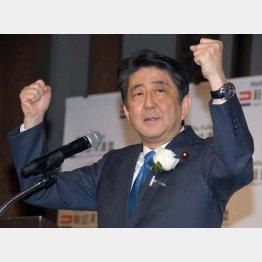 都合のいい解釈ばかり(C)日刊ゲンダイ