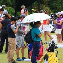 少数精鋭のプロ担当がプロゴルファーの活躍を陰で支える