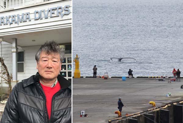 沿岸からでもクジラを見られる(赤間憲夫さん)/(C)日刊ゲンダイ