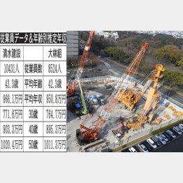 清水建設と大林組(C)日刊ゲンダイ