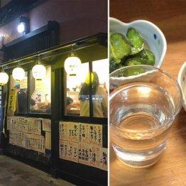 要町編 清酒+つまみ+お通し=349円の激安店でお宝酒に酔う