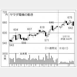 ヤマダ電機(C)日刊ゲンダイ