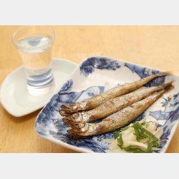 合う酒=芋焼酎、日本酒(C)日刊ゲンダイ