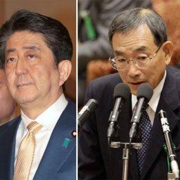 阪田元内閣法制局長官が公表した「改憲私案」の示す意味