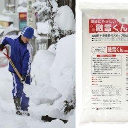売り上げ例年の数倍 大人気「融雪剤」は大雪時の秘密兵器