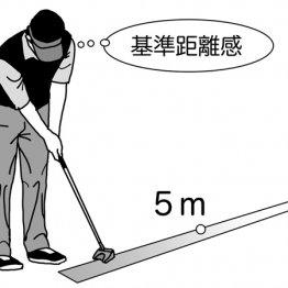 パットの距離感は5メートルの物差しをつくる