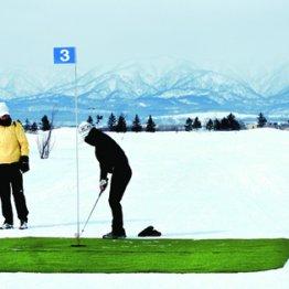 白銀の世界の開放感 北海道で「雪上ゴルフ」が人気急上昇