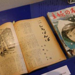 静岡県中伊豆 文豪が愛した湯けむりの街で癒やされる