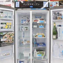 冷蔵と冷凍が左右に分かれたスタイリッシュな冷蔵庫