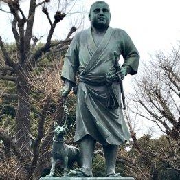 NHK大河で再注目 西郷隆盛像はなぜ上野公園にあるのか?