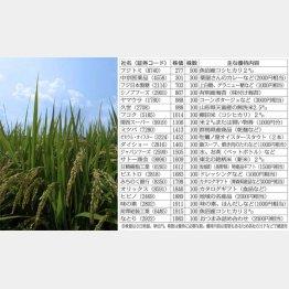 魚沼産コシヒカリや地域名産品など(C)日刊ゲンダイ